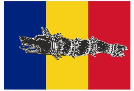 steag tricolor draco